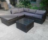 Patio-aus Weiden geflochtene im Freienmöbel für Rattan-Garten-Sofa-Set 2016
