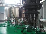 Automatische Glasflaschen-Saft-Getränkeplomben-Maschinerie für Indien-Markt