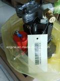 Injeção Pump5256607/4988593/4941066/3975701/5264248/4988595/4982057/3971529 da peça de motor de Cummins M11/ISM/Qsm
