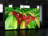 Ultral P1.9 Höhe erneuern drei Jahre Garantie Innen-LED-Bildschirmanzeige-