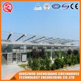 Serra di alluminio di vetro del giardino di profilo di agricoltura