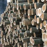 Ningún suelo de bambú tejido hilo manchado de articulación