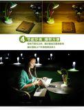 Tisch-Lampe der Sonnenblume-LED für Penholder-und Anzeigen-Licht