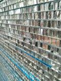 Personnaliser les panneaux de nid d'abeilles d'Alumium pour des partitions et des Cleanrooms