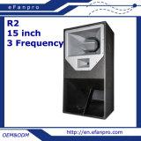 Altofalante remoto interurbano profissional do equipamento audio de 15 polegadas (R2 - TACTO)
