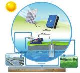 pompa solare automatica 5.5kw con il comitato solare, il regolatore e la pompa di CA
