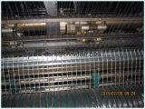 Vetroresina Geogrid per la strada, ferrovia, costruzione dell'infrastruttura dell'aeroporto