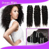 Vaisseau en cuticule vierge Raw Curly Wave Brazilian Hair Machine Weft
