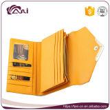 Бумажник владельца карточки Fani 2017 brandnew с монетной щелью