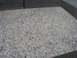 La Cina ha personalizzato le mattonelle rosse del granito della pelle di pietra naturale della tigre lucidate formato