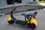 1000W 60V/12ahリチウムが付いている電気都市ココヤシのスクーター