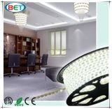 5630의 SMD LED 명세 220 240 볼트 LED 밧줄 빛