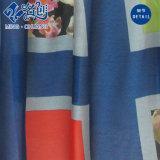 혼합 색깔 크 격자 무늬 패턴에 의하여 주름을 잡는 형식 숙녀 치마