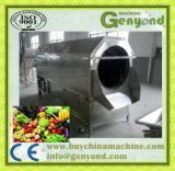 Limpar a linha de produção da fruta dos vegetais