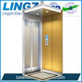 중국에서 상승 공급자가 엘리베이터에 의하여 집으로 돌아온다