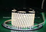백색 색깔 60LEDs SMD5630 220V IP65 LED 밧줄 빛