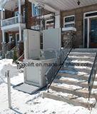 Petit ascenseur de vente de maison d'ascenseur de fauteuil roulant de plate-forme verticale chaude de levage pour le levage de handicapés de maisons