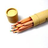 24 Farben-hoher Grad-Zeichnungs-hölzerner Farben-Bleistift