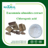 Порошок порошка выдержки Eucommia Ulmoides хлорогеновый кисловочный используемый в косметиках