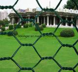 Покрынная PVC гальванизированная шестиугольная ячеистая сеть