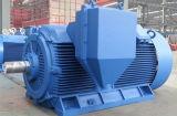 Motor trifásico eléctrico asíncrono de la jaula de ardilla de la caja de engranajes del compresor de aire de la bomba de agua de la inducción de la CA de la eficacia alta