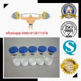 Péptido liofilizado blanco Gdf-8/Myostatin 1mg/Vial de la hormona de crecimiento del legit