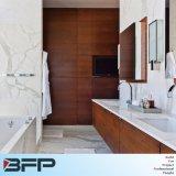 Unità di legno di vanità della stanza da bagno per mobilia domestica con lo specchio