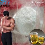 Orales aufbauende Steroide Oxymetholone Anadrol Puder Anapolon für Muskel-Gebäude