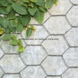 Compensation de fil hexagonale galvanisée par 30m/Roll chaude de vente