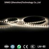 Striscia di alta luminosità SMD5050/SMD3528 CRI95 RGB/White/Warm LED con lo stesso colore per ogni spedizione