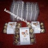 Cassetti liberi trasparenti dell'uovo di quaglie del PVC della plastica di 100% da vendere nel Kenia