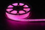 110V/230V impermeabilizzano la striscia bianca LED di alta luminosità 5050 LED del PVC dell'indicatore luminoso della corda del LED