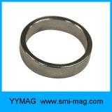 希土類極度の強いネオジムのリング磁石