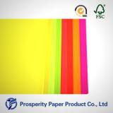 Papier lumineux de couleur de pâte de bois