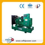40-100kw раскрывают тип генератор дизеля Lovol