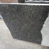 高品質の中国の黒い花こう岩