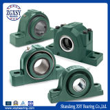 Ucp / Ucf / Ucfl / Uct / Ucpa Series Stainless Chorme Steel Pillow Block Bearing