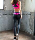 Кальсоны Капри йоги женщины, гимнастика/износ спортов, гетры гимнастики, Jogging костюм
