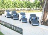 Planche à roulettes électrique de deux roues avec la batterie de Samsung