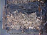 Сетка клетки корзины роста устрицы перлы США для водохозяйства