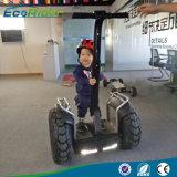 De 21-duim van het Golf van de Kwaliteit van de Prijs van Ecorider E8 Goede Betrouwbare Grote Autoped