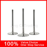 Manufacturer cinese Intake&Exhaust Engine Valve per All Models