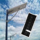 5W-120W 승인되는 Ce/RoHS/IP65/ISO9001를 가진 통합 태양 LED 가로등 태양 정원 빛