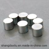 N45 Speciale Gevormde Permanente Magneten NdFeB
