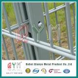656 ou 868 cercas de fio dobro de alta elasticidade/cerca galvanizada mergulhada quente do engranzamento soldado