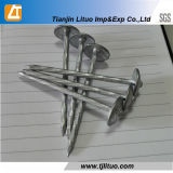 Bwg9 X 2,5 Inch Twisted Umbrella Head Roofing Nails