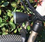 鋼鉄フォーク材料およびはいトレーニングの車輪の新しいモデルの電気自転車(OKM-878)