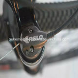 Nuovo Design 350W Carbon Fiber E-Bicycle Okm-101