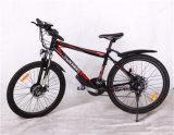 Bicicleta elétrica chinesa da bicicleta elétrica elétrica japonesa 48V 2000W da bicicleta