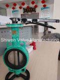 API/ANSI/DIN klasse 150 de Vleugelklep van het Wafeltje Met Handvat/Toestel